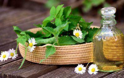 9 Aplicacions per a les plantes medicinals