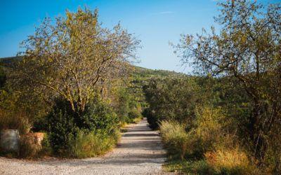 Les millors rutes de senderisme pel Garraf