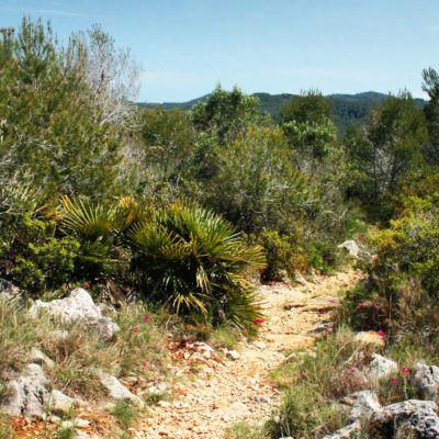 Què té d'especial el paisatge del Garraf?