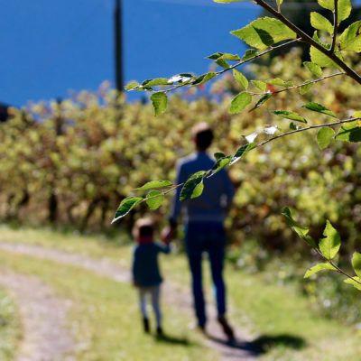 14 Preguntes freqüents sobre les Vacances en família